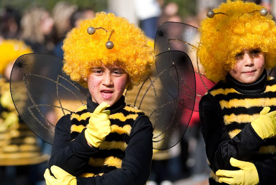 Carnavales de Navalmoral de la Mata 2009 por el fotógrafo profesional Vicente Alfonso