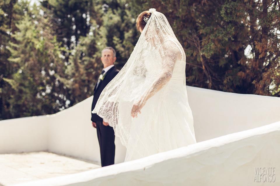 Boda Clodoaldo y Mª Jesús por el fotógrafo profesional Vicente Alfonso