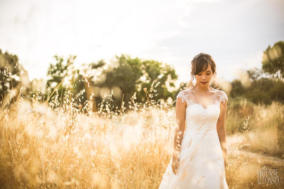 Retrato novia de Vietnam en el campo