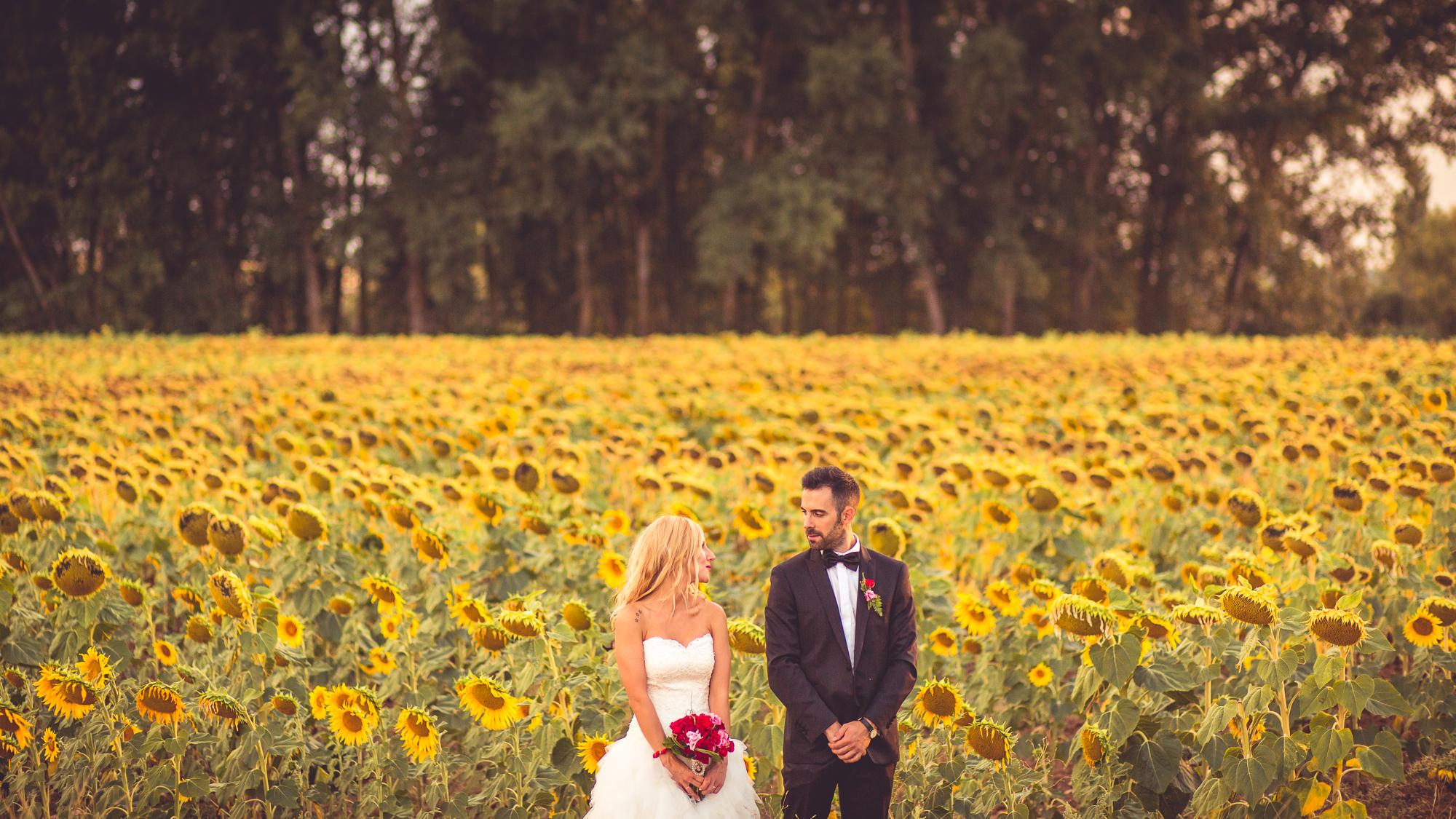 Bodas en Extremadura, Bodas en Madrid, Fotógrafo de Bodas, Fotografía de Bodas, Reportajes de boda