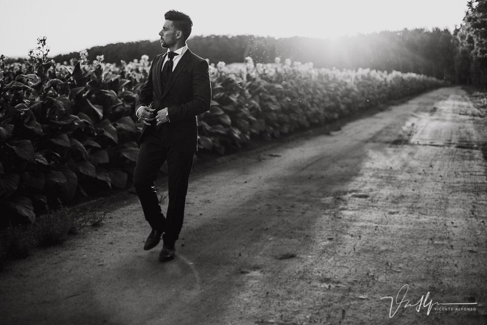 Novio paseando entre las plantaciones de tabaco de la Vera