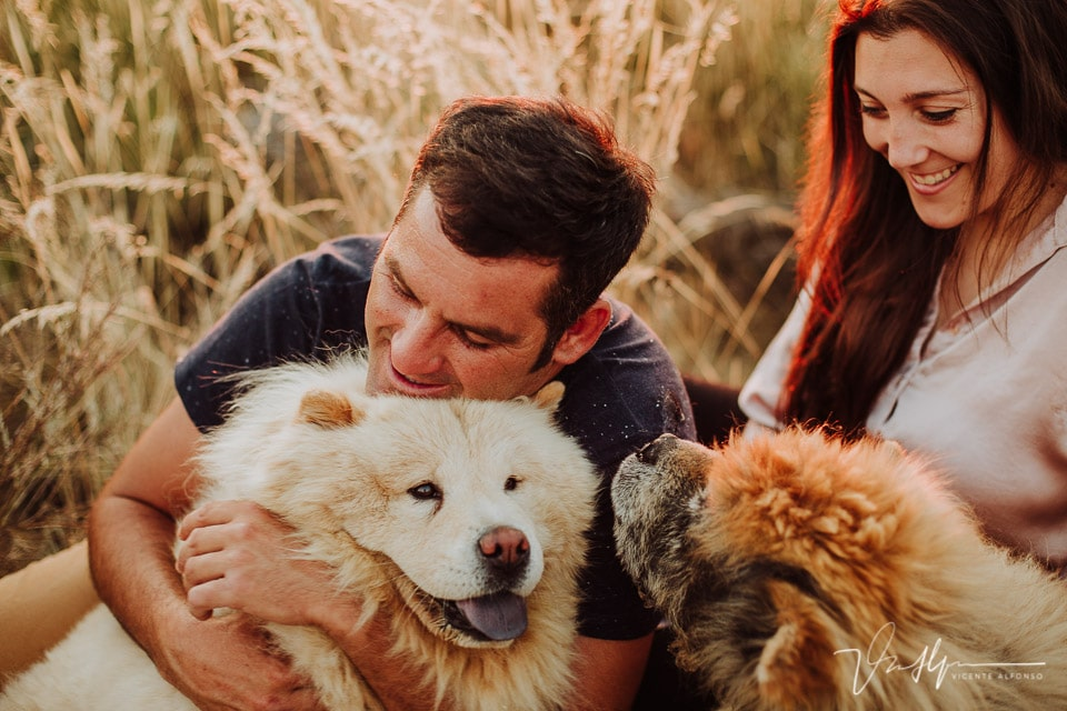 Abrazando sus perritos chowchow