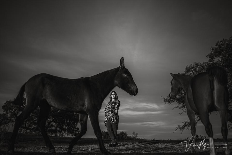 Fotografía de embarazo entre caballos
